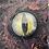 Thumbnail: Dragon eye