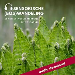 sensorische(bos)wandeling_varens.png