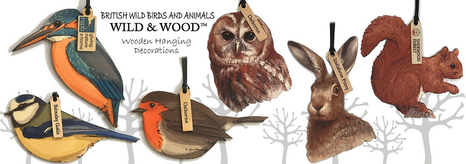 birds and animals.jpg
