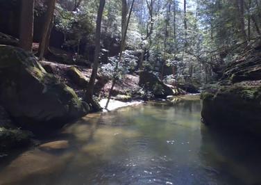 Caney Creek, Al