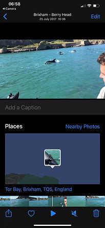 Brixham Dolphins on iPhone.jpg