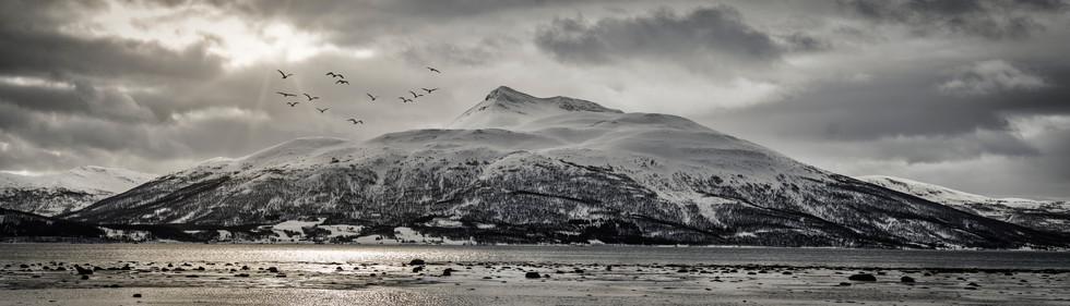 Senja, Arctic Circle