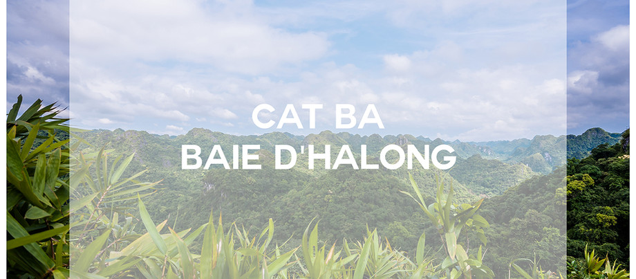 | VOYAGE - Vietnam et Thaïlande 2016 en sac à dos : Partie IV - CAT BA |