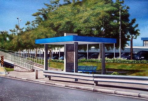 Marcelo Lopes _ Banco Azul