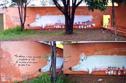 PORCA DE VIDRO / GLASS PIG