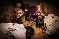 En människa som blir uppäten av en zombiehord