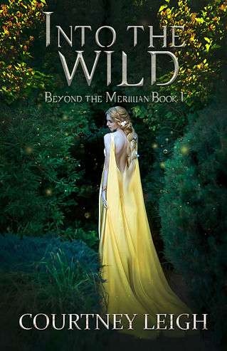 into the wild cover 2.jpg