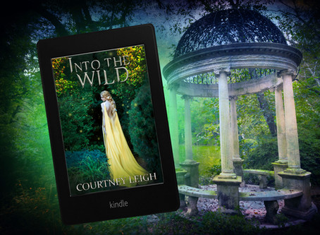 """INTO THE WILD"" Excerpt (New Fantasy Romance Series)"
