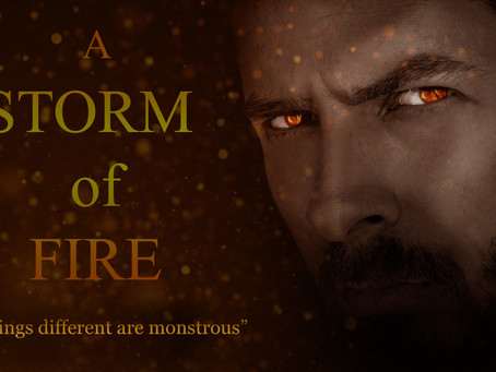 A STORM OF FIRE: Society