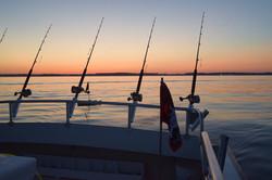 Chesapeake Bay Fishing