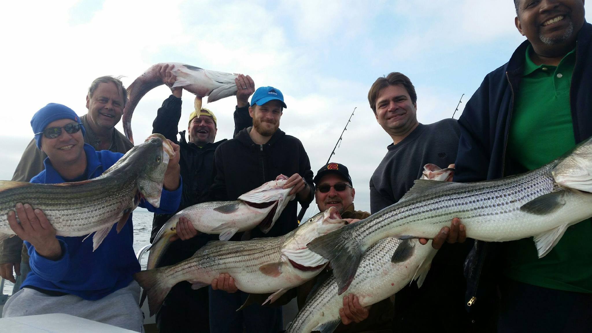 Chesapeake bay fishing, Rockfish 10