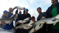 Chesapeake bay fishing, Rockfish 10