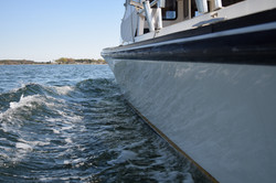 Bay fishing,bay charters,Rockfishing