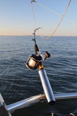 chesapeake bay fishing 2
