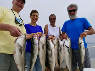 The fish are in the Bay! Caught our limit quick this morning!