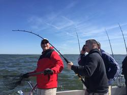 Rockfish 21, rockfish reeling