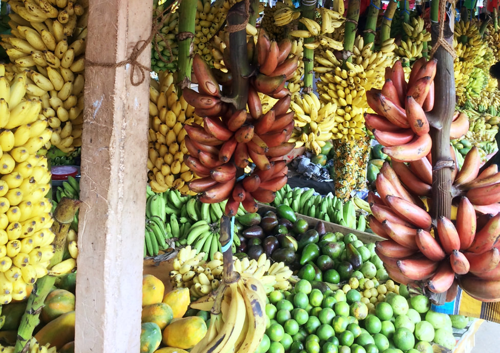 The Flame Tree Estate Hotel Bananas.jpg