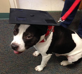 Miser Peters the Kids 4 Crittrs mascot wearing his graduation cap