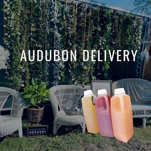 Audubon June delivery-please read full description