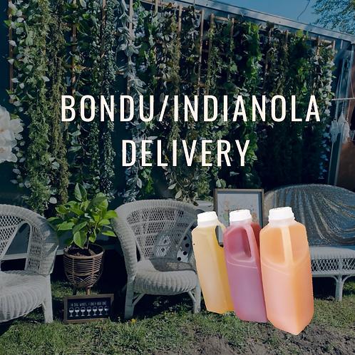 Bondurant + Indianola double delivery- please read full description