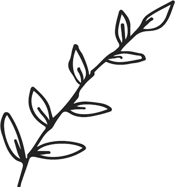 89-891962_branch-with-leaves-outline-rub