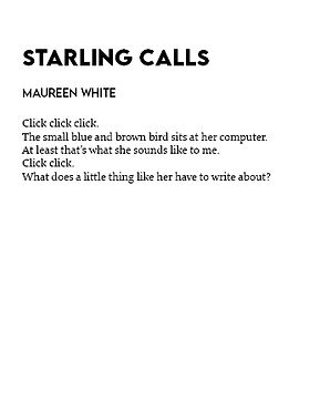 starling calls2.jpg