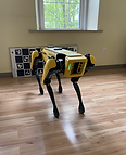 Robotic Dog.heic