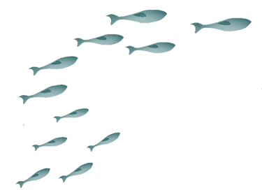 Edited- Fish for SOW.png