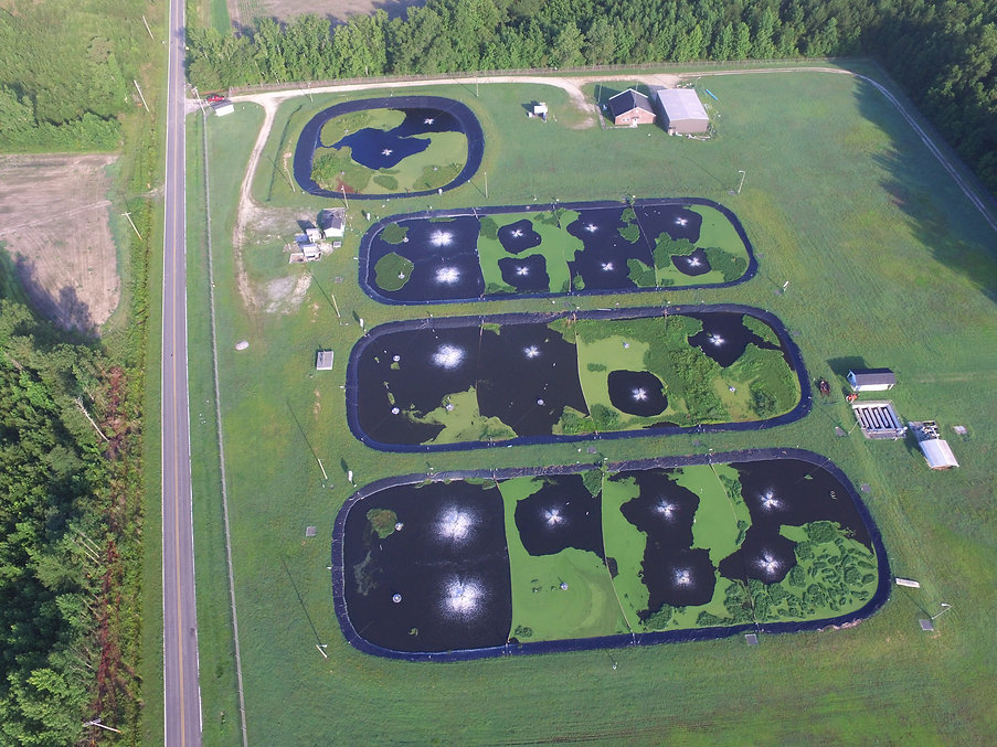 Wastewater Treatment Plant Designed by Eastern Engineering
