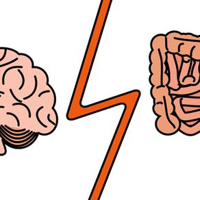 Vous avez un deuxième cerveau. Où se cache-t-il?