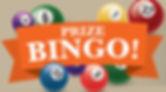 Bingo-Salsa_-88-x-100_advert.jpg