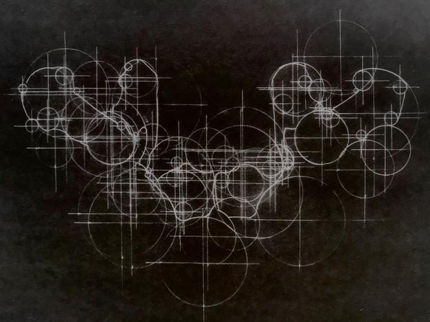 bone drawing w&b.jpeg