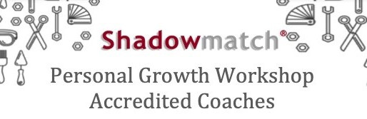 Shadowmatch Newsletter - February 2019
