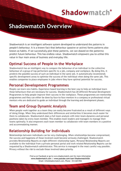 Shadowmatch Overview