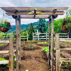 Welcome to the vegetable garden 😊