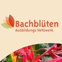 Bachblüten Netzwerk