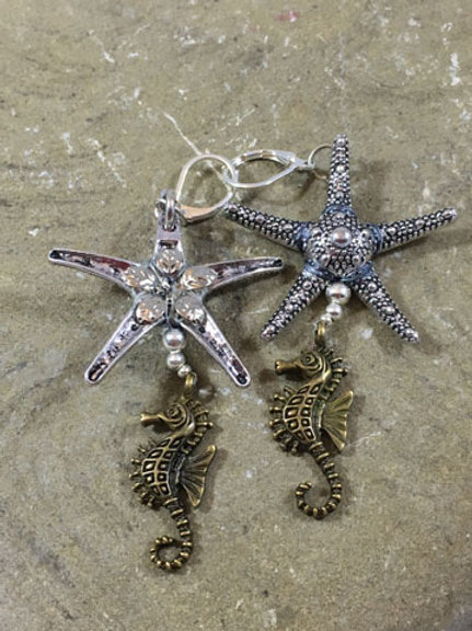 Sea star1