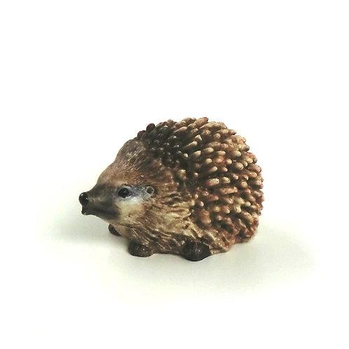 Porcospino 5,5 cm