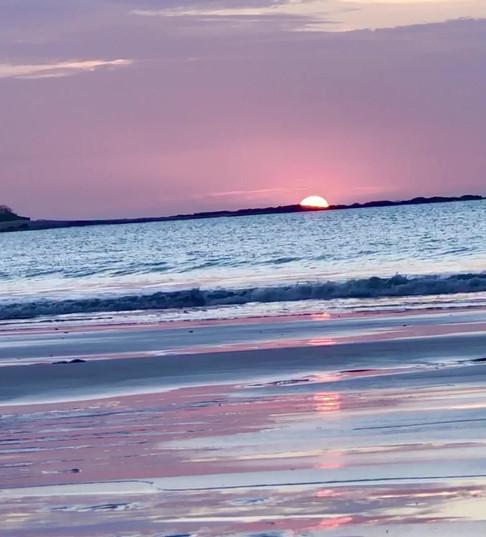Zen Space, Blue Purple Pink Tropical Sunset