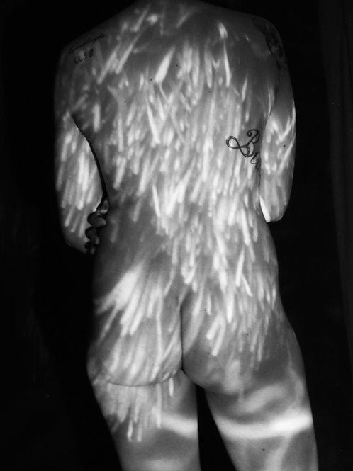 Female Nude Back Thistle Light