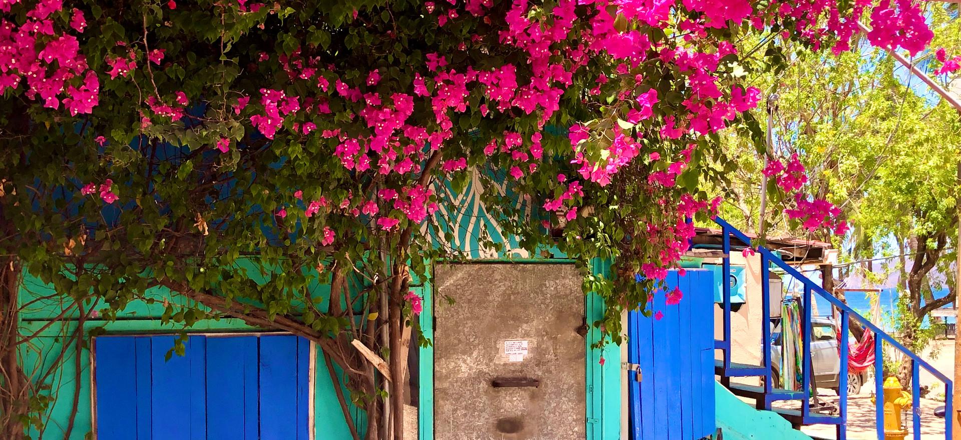 Tropical Perfectiom
