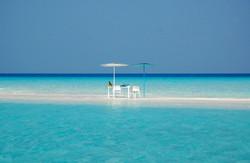 Azalea Cruise Sand Bank Lunch