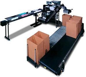 BF-4000 Box Filling System