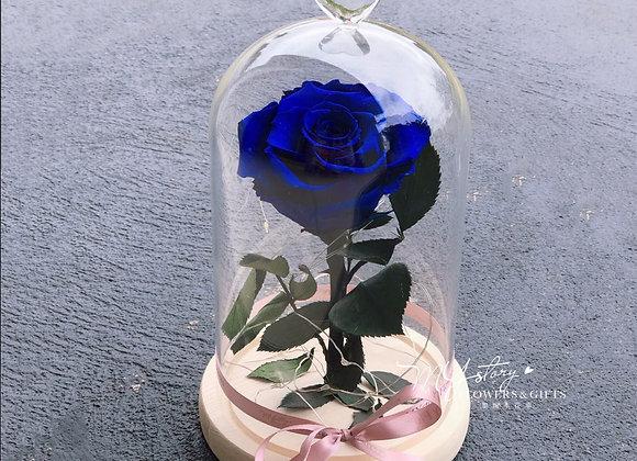 Everlasting Rose Blue MYstory (Inc. LED)