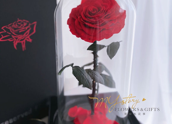PRESERVED ROSE DOME with gift box