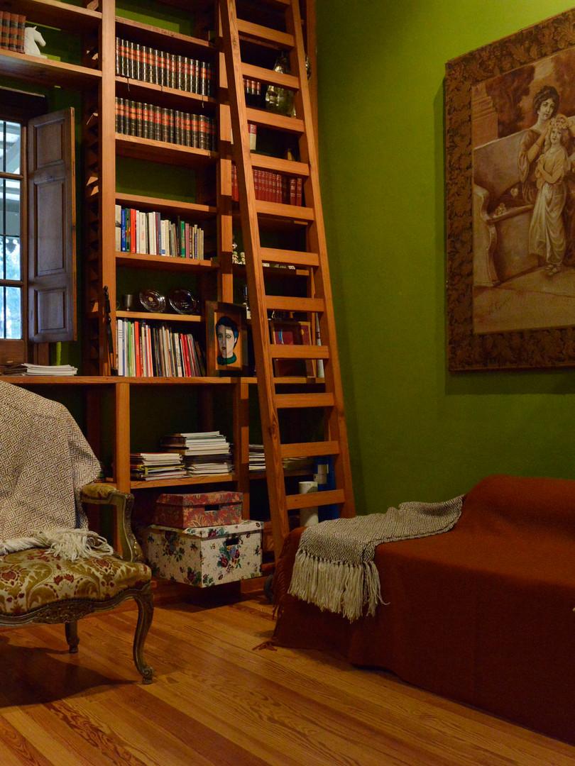 Biblioteca y sala de tv