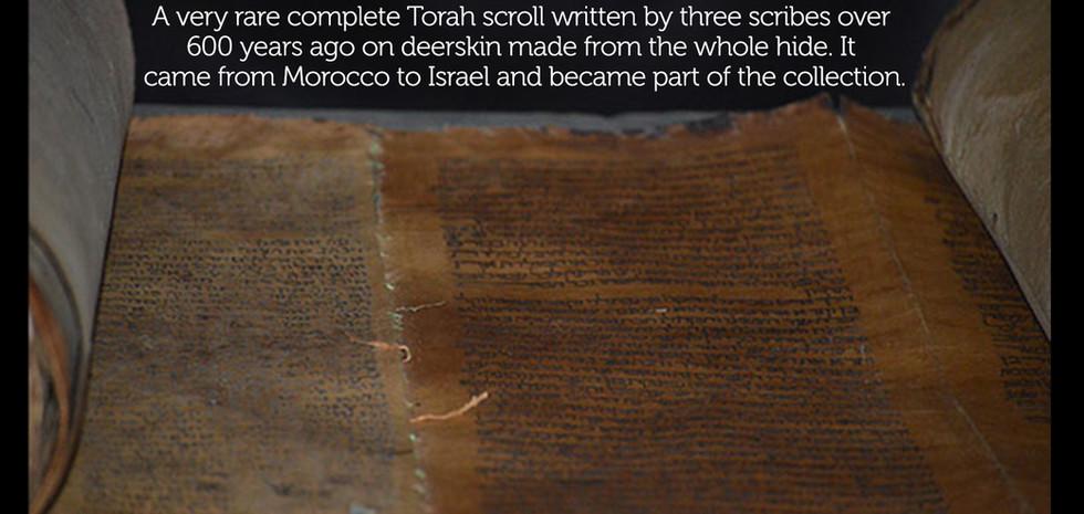600 year torah scroll framed.jpg