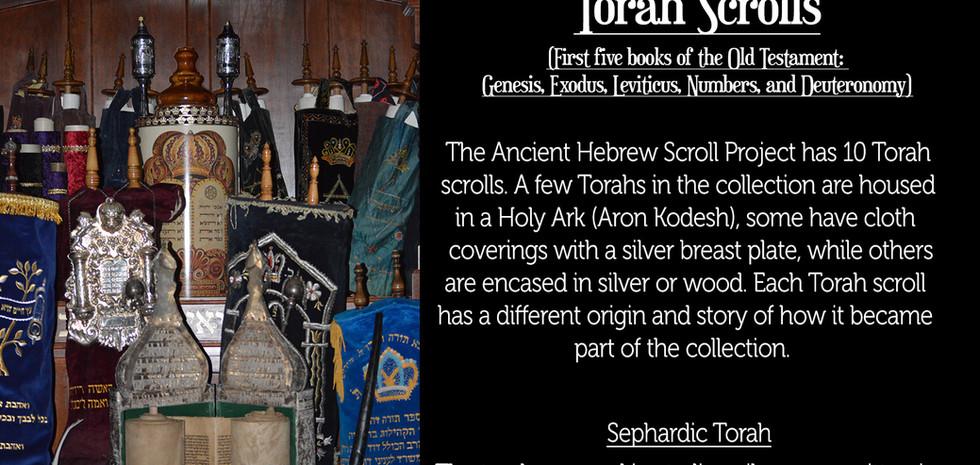 torah scrolls.jpg