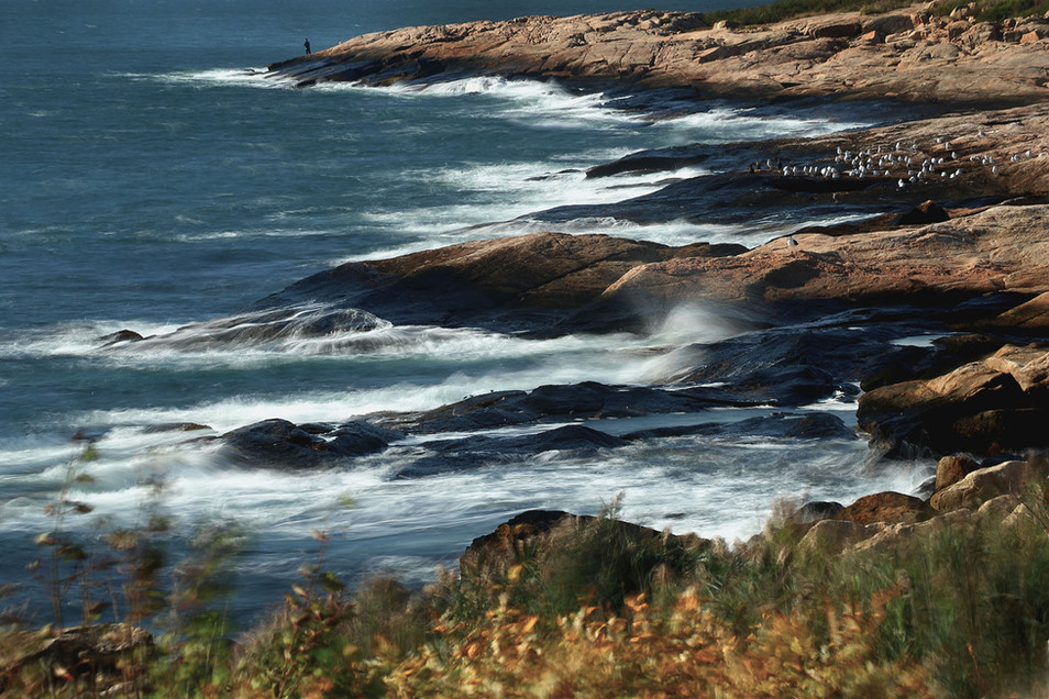9- Seagulls & Fisherman
