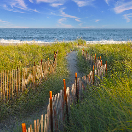 Liberation Path - Narragansett